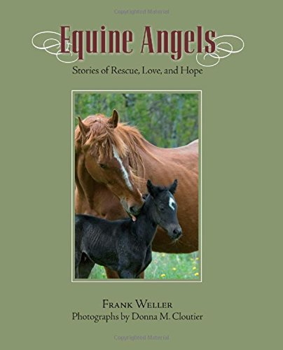 9781599214443: Equine Angels: Stories Of Rescue, Love, And Hope
