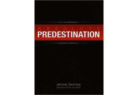 9781599255002: Absolute Predestination