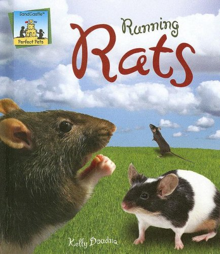 Running Rats (Perfect Pets): Doudna, Kelly