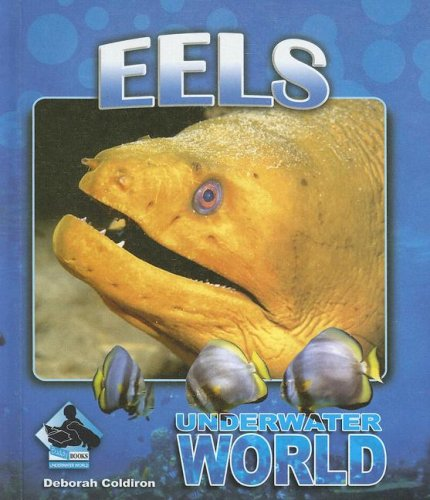 9781599288185: Eels (Underwater World)