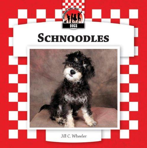 Schnoodles (Checkerboard Animal Library: Dogs): Jill C Wheeler