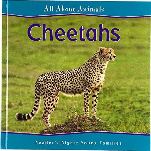 9781599391182: Cheetahs