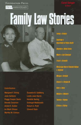 9781599410203: Family Law Stories