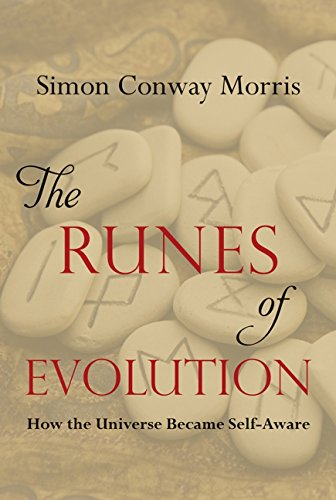 9781599474649: The Runes of Evolution: How the Universe Became Self-Aware