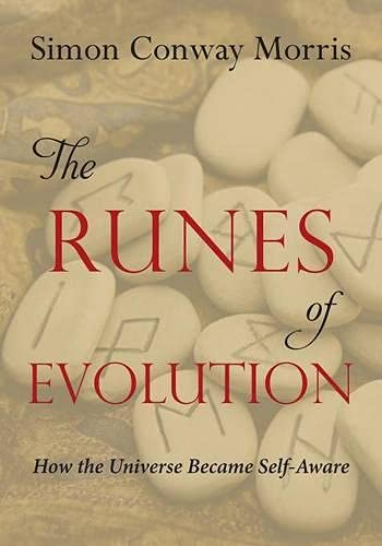 9781599475011: The Runes of Evolution: How the Universe became Self-Aware