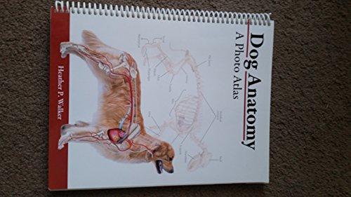 9781599842912: Dog Anatomy: A Photo Atlas