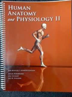 Human Anatomy and Physiology II Lab Manual: Angel Rodriguez, Joy