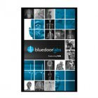 9781599843902: bluedoorlabs A&P Featuring PAR