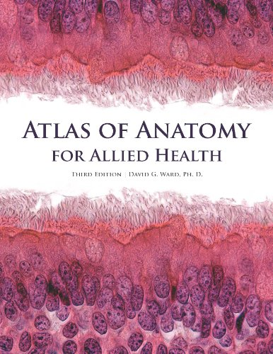 9781599847184: Atlas of Anatomy for Allied Health
