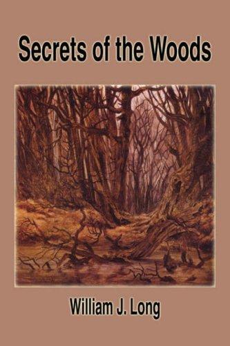 9781599867106: Secrets of the Woods
