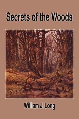 9781599868677: Secrets of the Woods