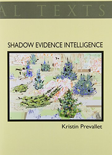 Shadow Evidence Intelligence, and Other Formal Disruptions