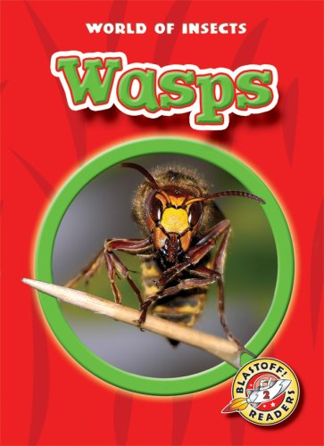 Wasps (Blastoff! Readers: World of Insects) (Blastoff Readers. Level 2) (9781600140761) by Martha E. H. Rustad