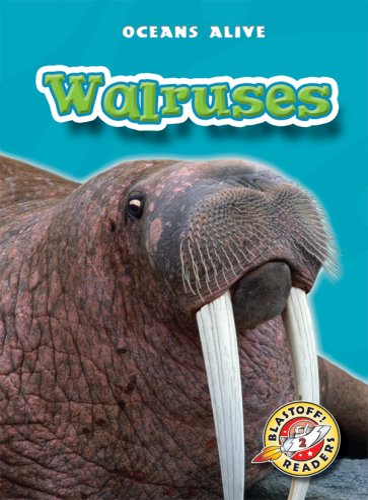 9781600141102: Walruses (Blastoff! Readers: Oceans Alive) (Blastoff! Readers: Oceans Alive (Hardcover))