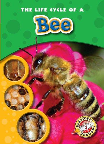 9781600143052: The Life Cycle of a Bee (Blastoff! Readers: Life Cycles) (Blastoff! Readers: Life Cycle of A... Level 3 (Library))