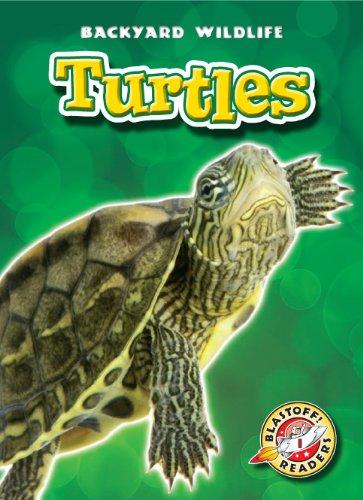 Turtles (Blastoff! Readers: Backyard Wildlife) (Blastoff! Readers: Backyard Wildlife: Level 1 (...