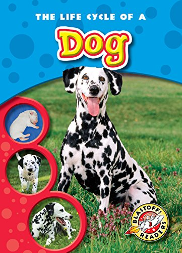9781600145230: Life Cycle of a Dog, The (Blastoff! Readers: Life Cycles) (Life Cycles: Blastoff Readers, Level 3)