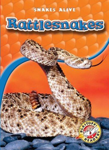 9781600145438: Rattlesnakes (Paperback) (Blastoff! Readers: Snakes Alive) (Snakes Alive: Blastoff Readers, Level 3)