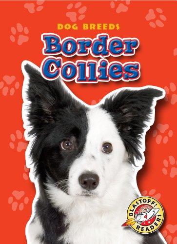 9781600145650: Border Collies (Blastoff! Readers: Dog Breeds) (Blastoff Readers. Level 4)