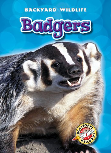 Badgers (Blastoff! Readers: Backyard Wildlife) (Blastoff Readers. Level 1): Derek Zobel
