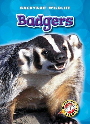 9781600145957: Badgers (Blastoff! Readers: Backyard Wildlife) (Blastoff Readers. Level 1)