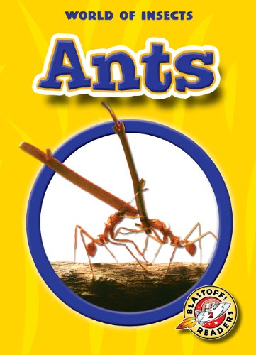 9781600146923: Ants (Paperback) (Blastoff! Readers: World of Insects)