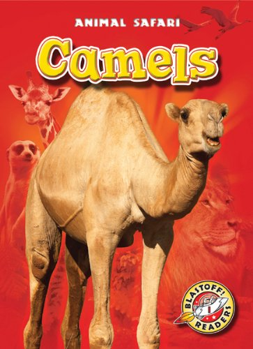 9781600147159: Camels (Blastoff! Readers: Animal Safari) (Blastoff Readers. Level 1)