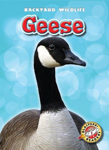 Geese (Library Binding): Megan Borgert-Spaniol