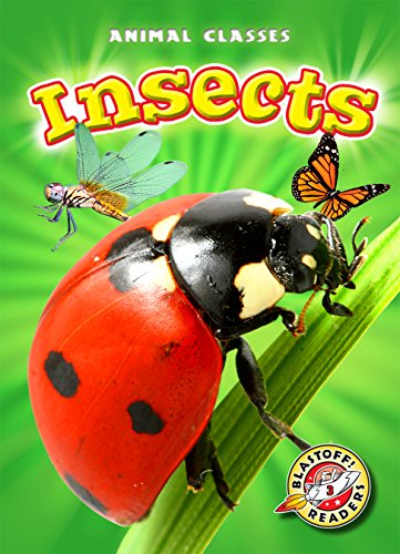 9781600148408: Insects (Blastoff! Readers: Animal Classes) (Animal Classes: Blastoff Readers, Level 3)