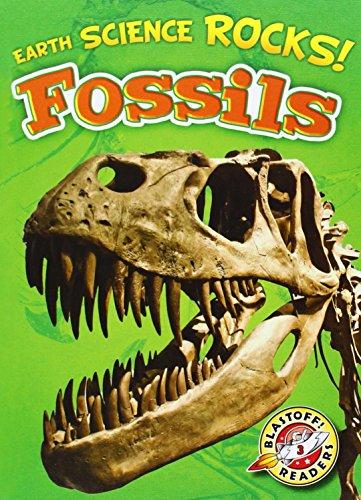 Fossils (Earth Science Rocks!): Bowman, Chris