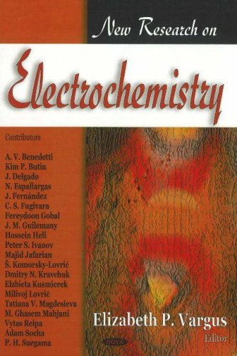 9781600213045: New Research on Electrochemistry