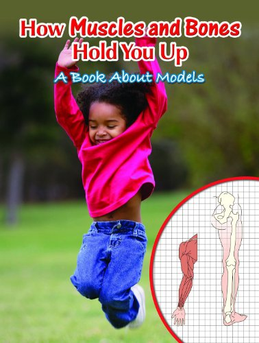 9781600445392: How Muscles and Bones Hold You Up: A Book About Models (Big Ideas for Young Scientists)