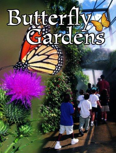 Butterfly Gardens (Field Trips): Jennifer Blizin Gillis