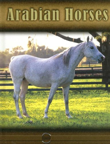 9781600445811: Arabian Horses (Eye to Eye with Horses (High Interest))