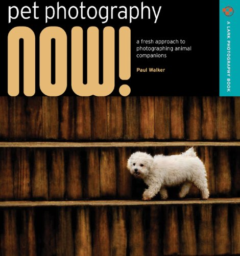 9781600592089: Pet Photography NOW!: A Fresh Approach to Photographing Animal Companions (A Lark Photography Book)