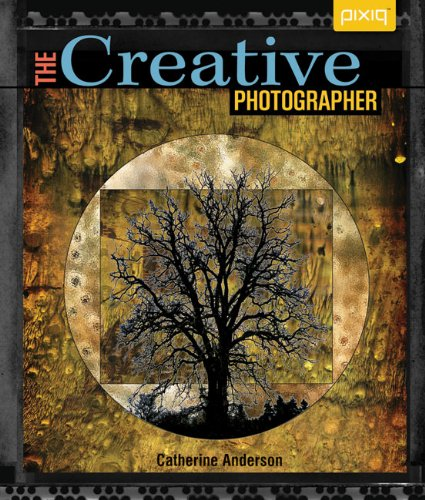 9781600597169: The Creative Photographer (Pixiq)