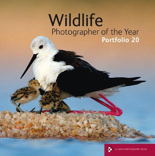 9781600599903: Wildlife Photographer of the Year, Portfolio 20