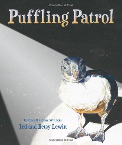 Puffling Patrol: Ted Lewin