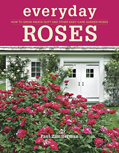 9781600857782: Everyday Roses: How to Grow Knock Out® and Other Easy-Care Garden Roses