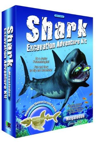 Shark Excavation Activity Kit: NA