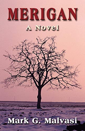 9781601450418: Merigan: A Novel