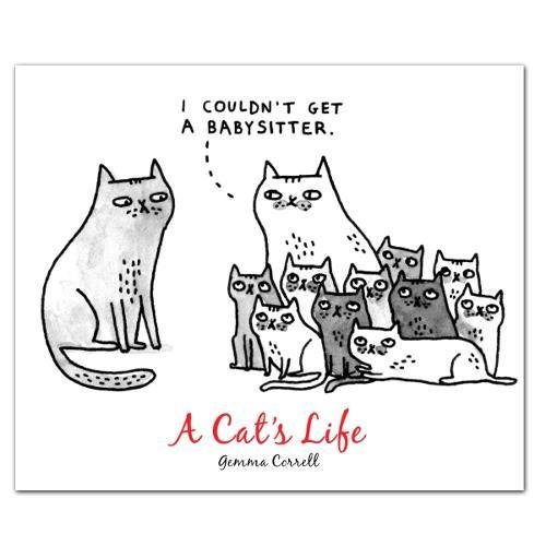 A Cat's Life: Quicknotes -- Greeting, Thank You & Invitation Cards in a Reuseable Flip-Top...