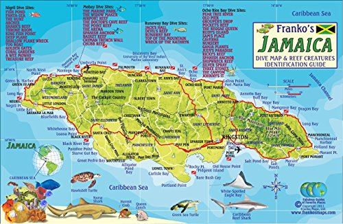 9781601904003: Jamaica Dive Map & Coral Reef Creatures Guide Franko Maps Laminated Fish Card