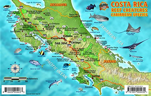 9781601904430: Costa Rica Dive Map & Caribbean Reef Creatures Guide Franko Maps Laminated Fish Card