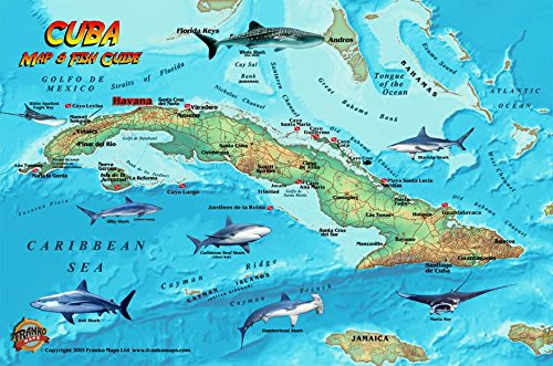 9781601904607: Cuba Dive Map & Coral Reef Creatures Guide Franko Maps Laminated Fish Card