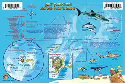 9781601904805: Dry Tortugas Florida Dive Map & Coral Reef Creatures Guide Franko Maps Laminated Fish Card