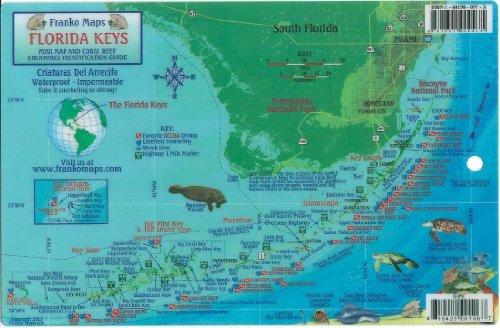 9781601909848: Florida Keys Dive Map & Reef Creatures Guide Franko Maps Laminated Fish Card