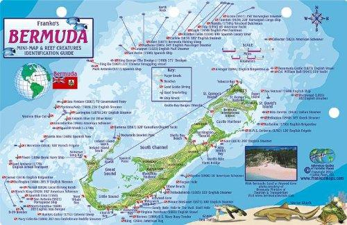 9781601909862: Bermuda Dive Map & Reef Creatures Guide Franko Maps Laminated Fish Card