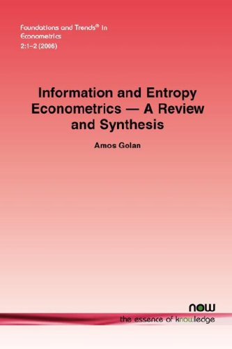 9781601981042: Information and Entropy Econometrics - A Review and Synthesis (Foundations and Trends(r) in Econometrics)