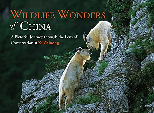 Wildlife Wonders of China: A Pictorial Journey Through the Lens of Conservationalist XI Zhinong: Xi...